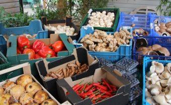 Airfield Farmers Market