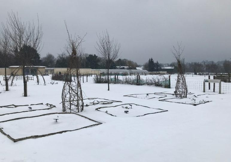 https://www.airfield.ie/wp-content/uploads/2019/02/Gardens-in-Airfield-after-Storm-Emma-min.jpg