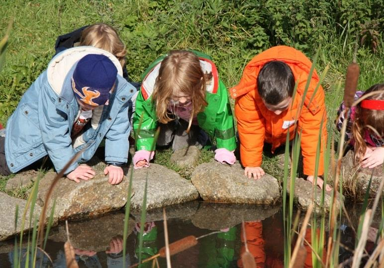 https://www.airfield.ie/wp-content/uploads/2019/02/Primary-School-Group-pond-dipping-Airfield-Estate-min.jpg