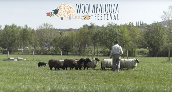 https://www.airfield.ie/wp-content/uploads/2019/03/Woolapalooza-Hero-Image-min.jpg