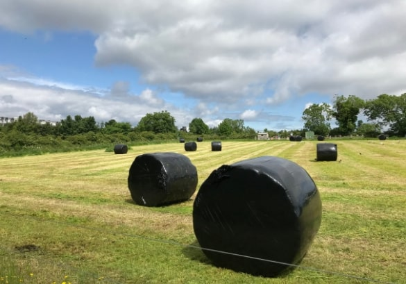 https://www.airfield.ie/wp-content/uploads/2019/07/Silage-Making-at-Airfield-Estate-1-min.jpg