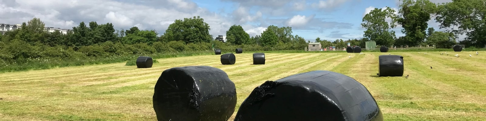 https://www.airfield.ie/wp-content/uploads/2019/07/Silage-making-at-Airfield-Estate-min.jpg
