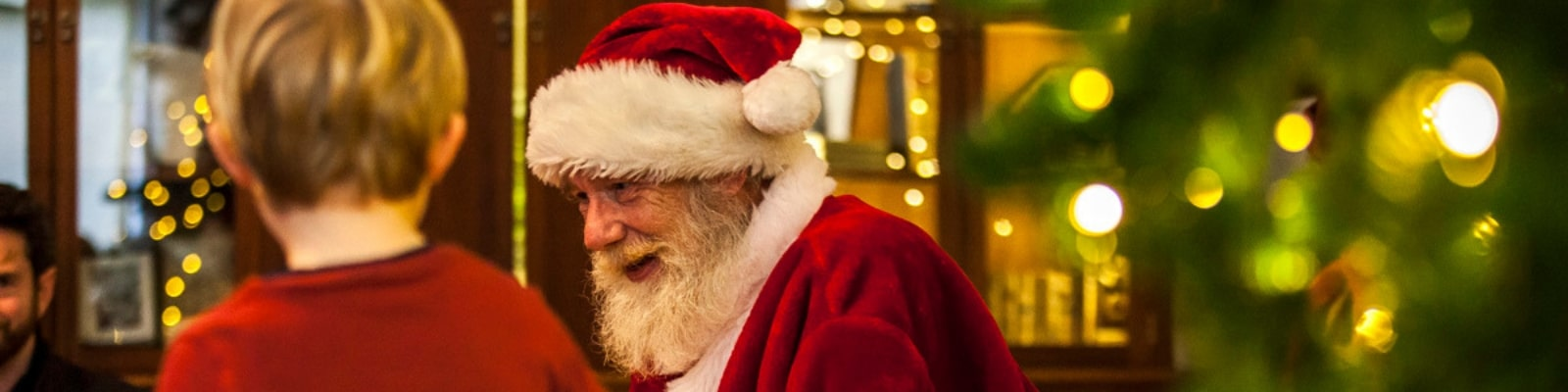 https://www.airfield.ie/wp-content/uploads/2019/08/Meeting-Santa-at-Airfield-Estate-min.jpg
