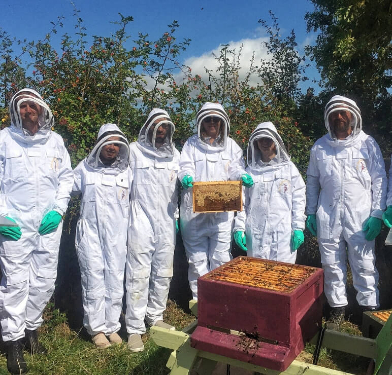 https://www.airfield.ie/wp-content/uploads/2019/12/Bee-Keeping-up-next-1.jpg