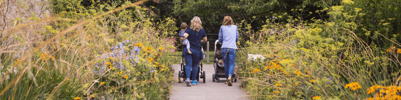 https://www.airfield.ie/wp-content/uploads/2020/07/Family-walk-at-Airfield-Estate-woodland-walk-1.png