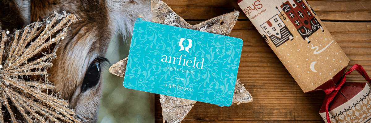 https://www.airfield.ie/wp-content/uploads/2020/11/Christmas-Gift-Card-Header-Image-1.png