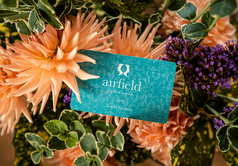 Gift Card for Airfield Estate