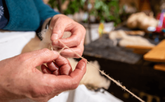 Processing Irish Wool