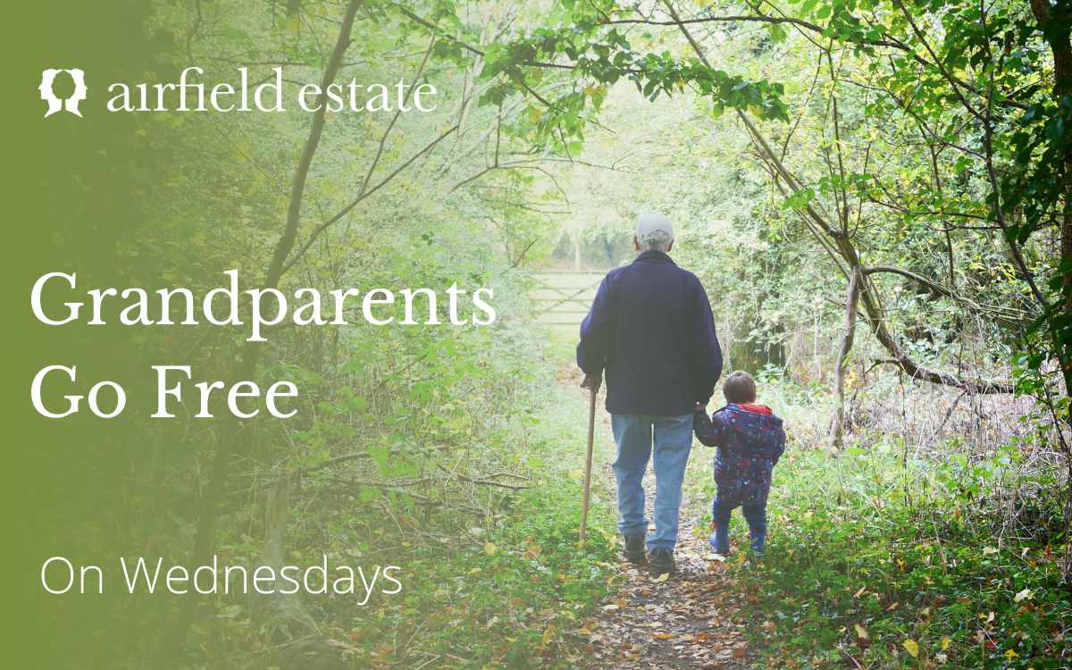 https://www.airfield.ie/wp-content/uploads/2021/07/Grandparents-go-free.png