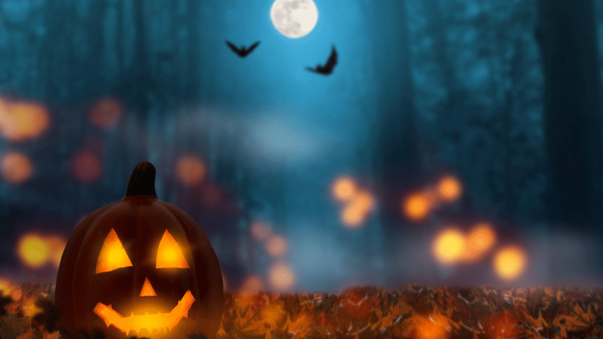 https://www.airfield.ie/wp-content/uploads/2021/10/Halloween-At-Airfield-Estate-1.png